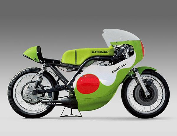 Kawasaki Er Race Fairing